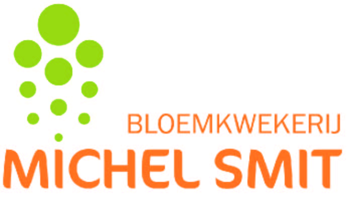 logo400-michelsmit